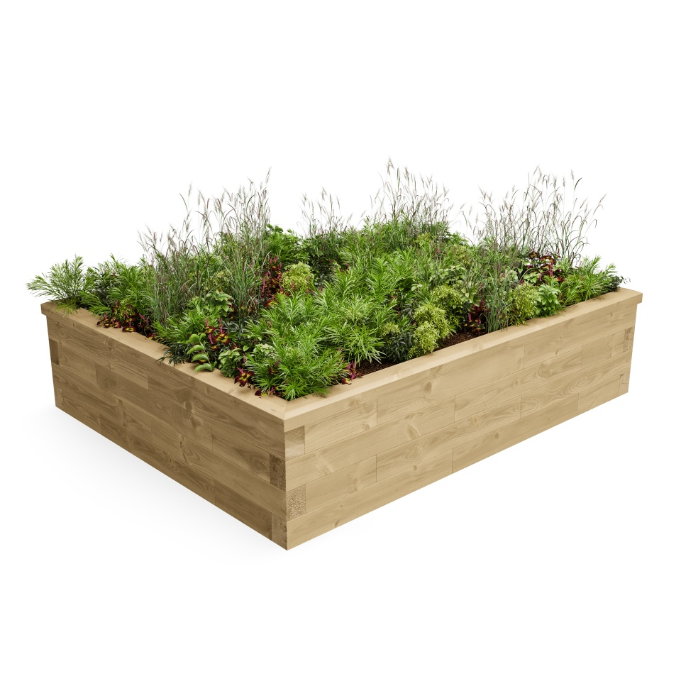 Raised Garden Box