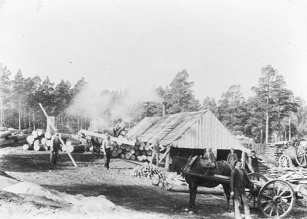 Sawmill 1862