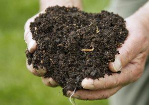 Kompost - jak na něj?